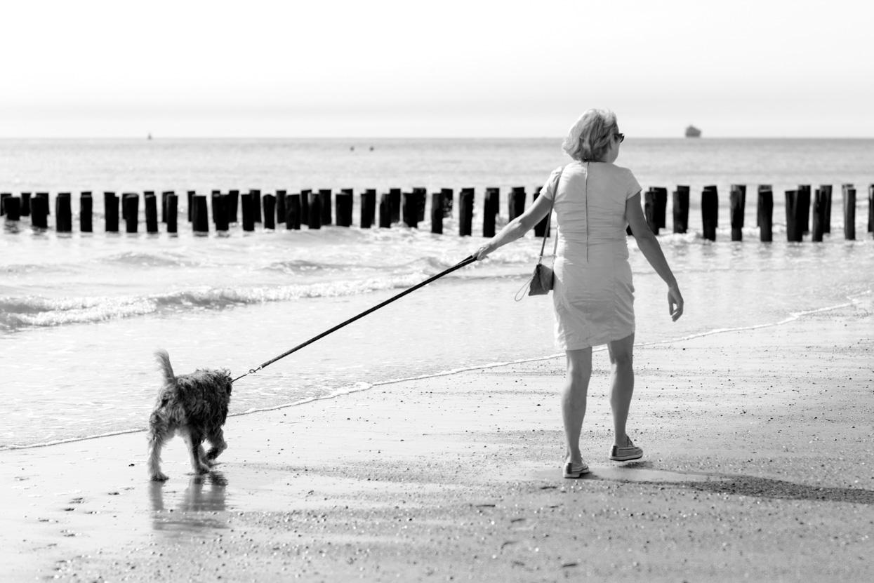 Met de hond aan zee