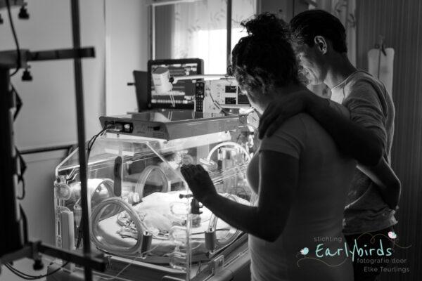 newborn earlybirds